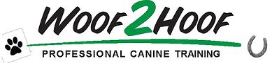 Dog Training Classes Rochester Ny