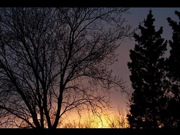 Screen Shot 2020-05-12 at 6.07.57 PM.png