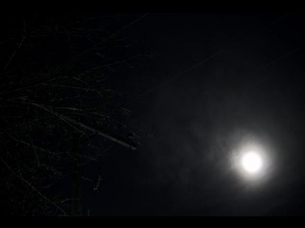 Screen Shot 2020-05-12 at 6.09.44 PM.png