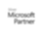 silver-partner-logo.png