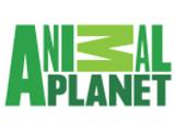 animal_planet_us.png