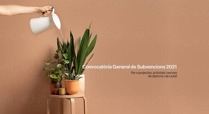 ajuntament-de-barcelona-subvencions.jpg