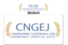 logo cngej.png
