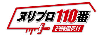 NuriPRO 110ban_logo_FIX-01.jpg