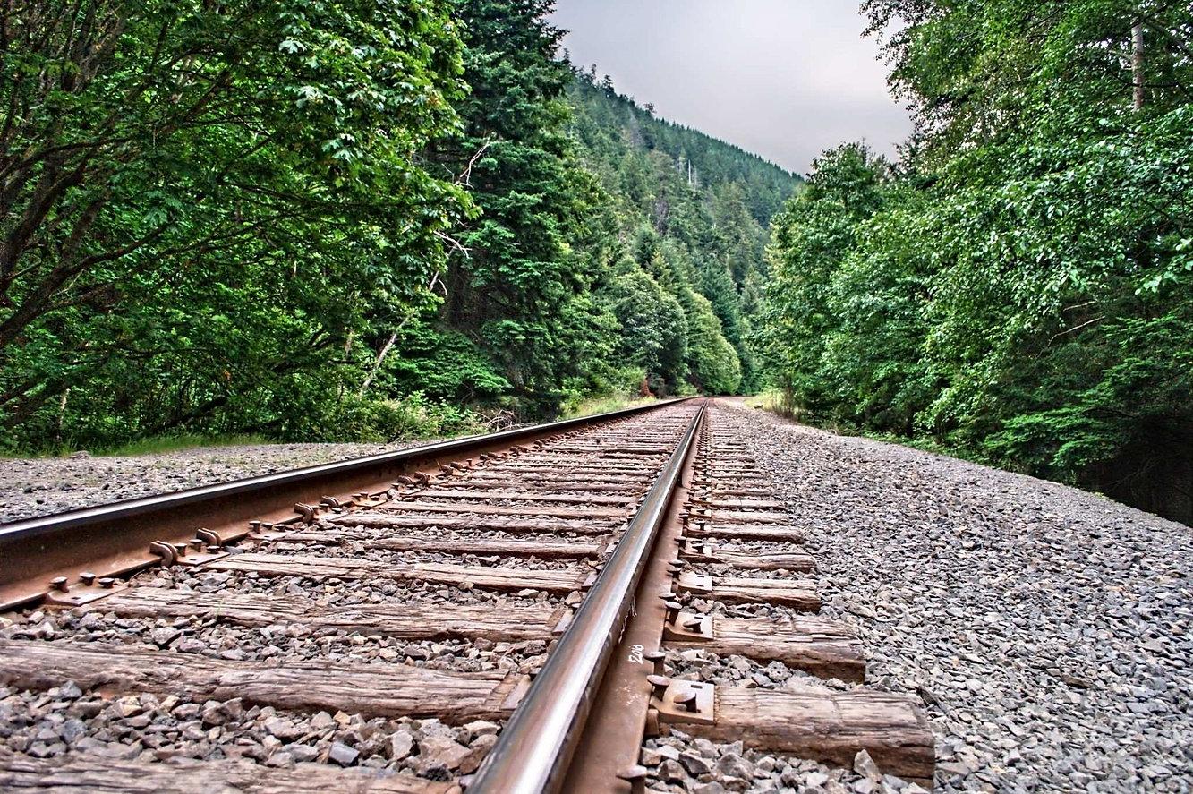 Vía férrea dte madera