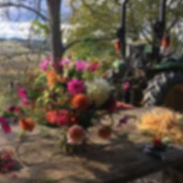 Bio Blumen vom Acker auf den Tisch_bearb