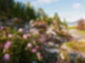 Geir Moen  - alpine_garden.jpg