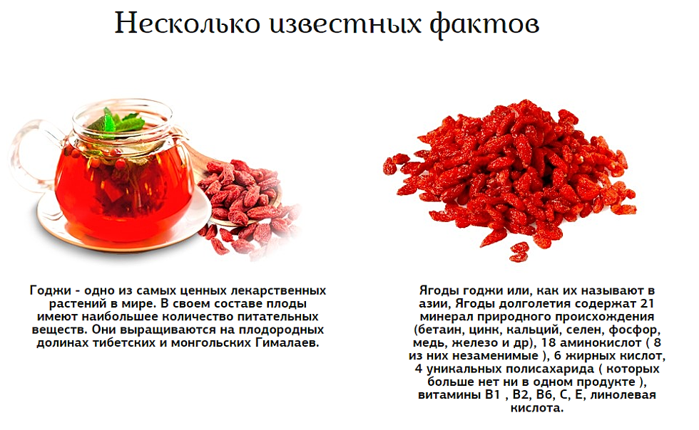 Ягоды Годжи - полезные свойства и противопоказания, как