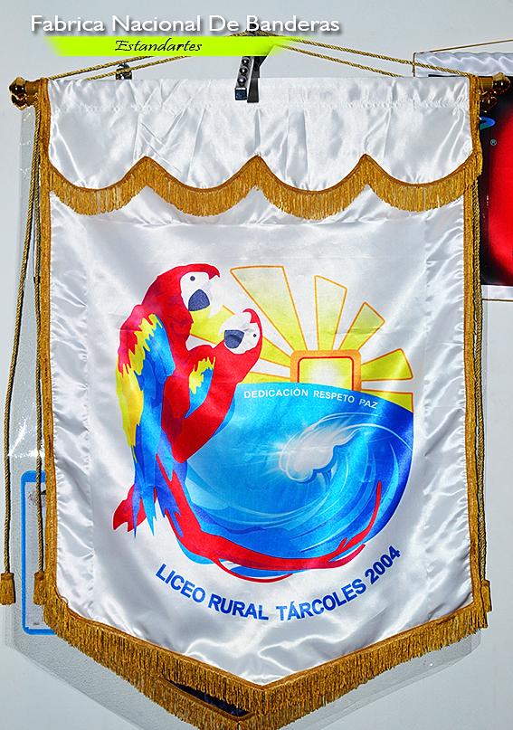 Fabrica Nacional De Banderas   Estandarte Liceo