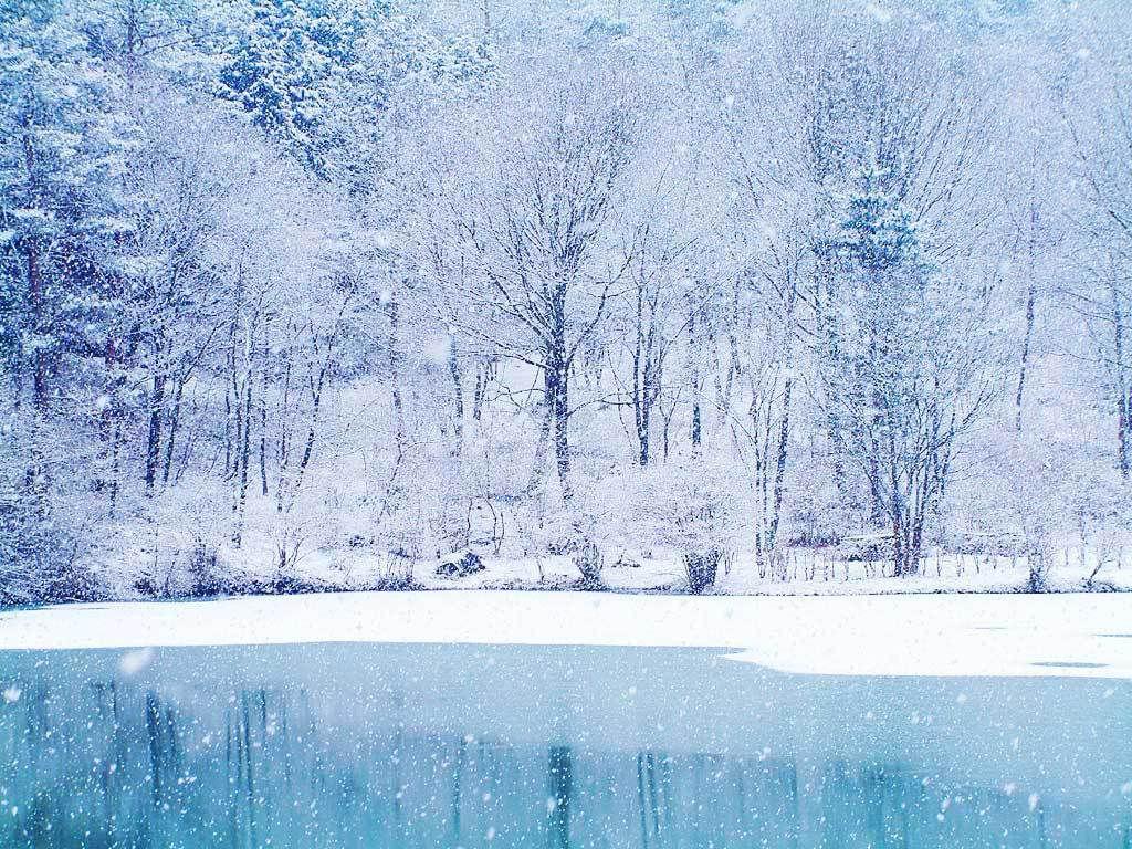 Mark O Connor Christmas Album, Holiday, Website, An Appalachian ...