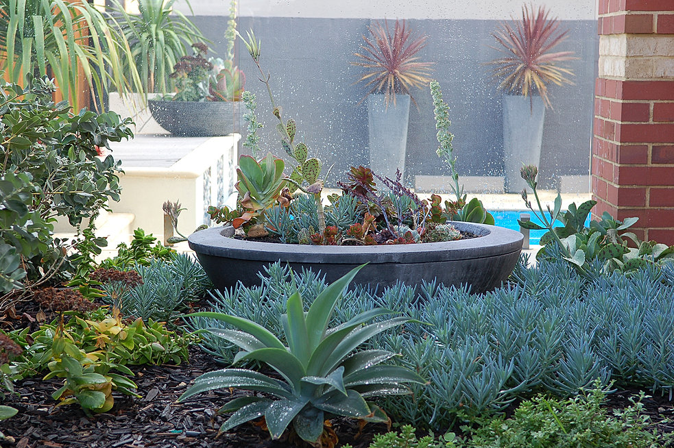 Landscape design perth sorrento grden design perth for Courtyard landscaping australia
