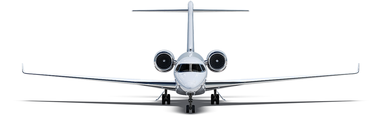 Exceutive Jet Charter Services