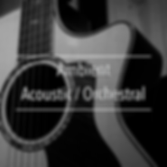 Ambient Acoustic Orchestral Cover.png