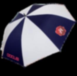 umbrella-main01.png