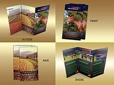 bloodstock...trifold brochure