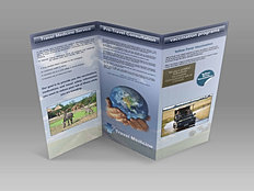 travel medicine...trifold brochure