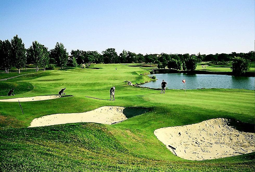 golf d albi calendrier