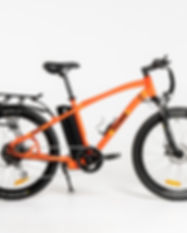 E Bike Urban.jpg