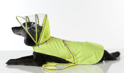 Push+Pushi_Dog-Raincoat_Safety-Yellow_1.jpg