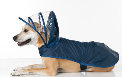 Push+Pushi_Dog-Raincoat_Navy_1.jpg