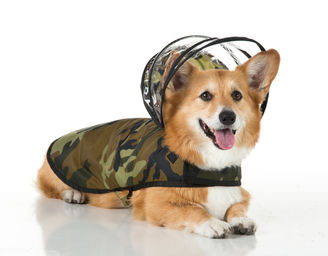 Push_Pushi-Camo-Raincoat.jpg
