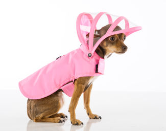 Push-Pushi_Dog_Raincoat_Pink_02.jpg