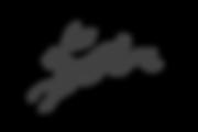 jack-rabbits-logo-icon.png
