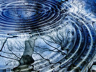 tree-water-winter-wave-lake-birch-125629
