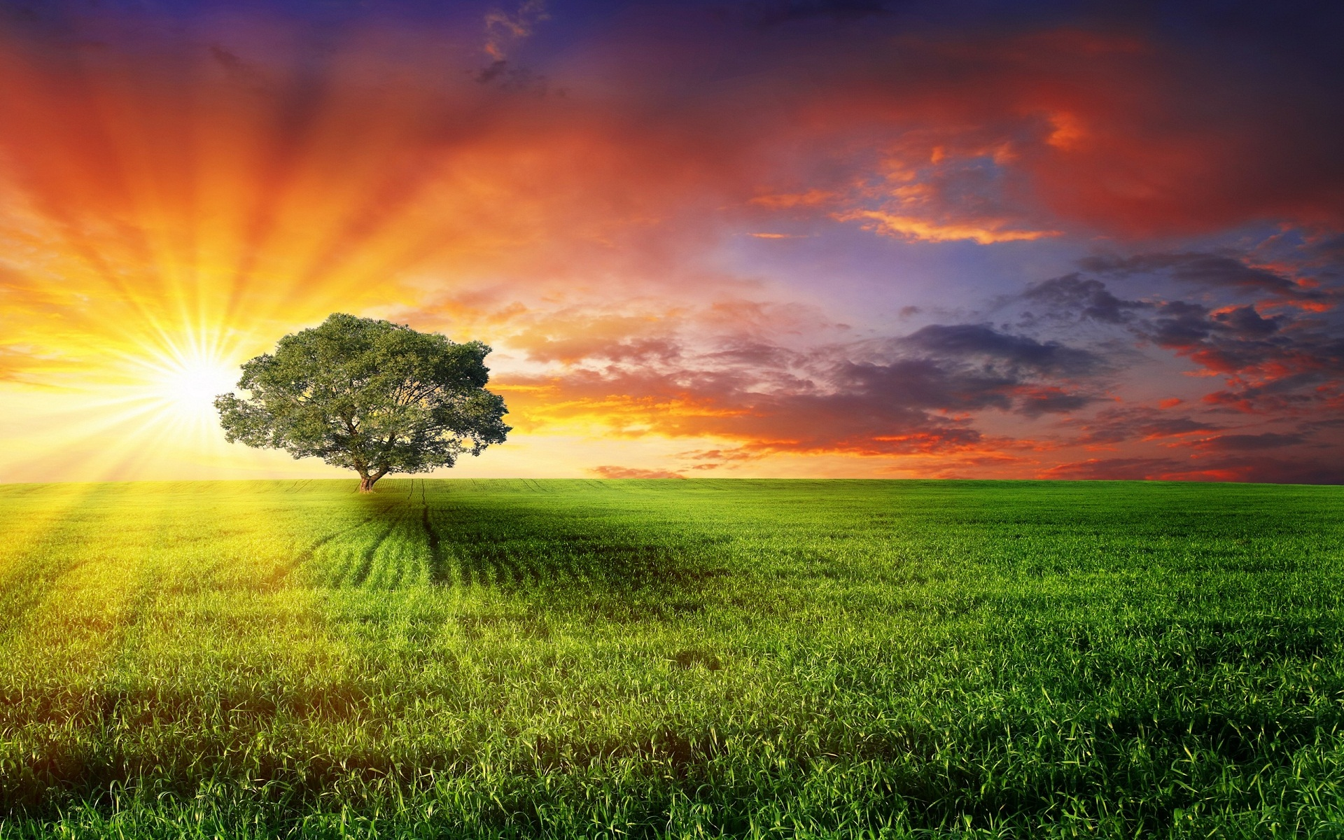 Golden Sun Rise Sertoma Indianapolis