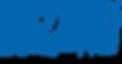 Logo Blizzard_Entertainment.png