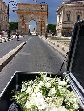 Coursier plis colis livraison en v lo cargo montpellier for Livraison fleurs montpellier