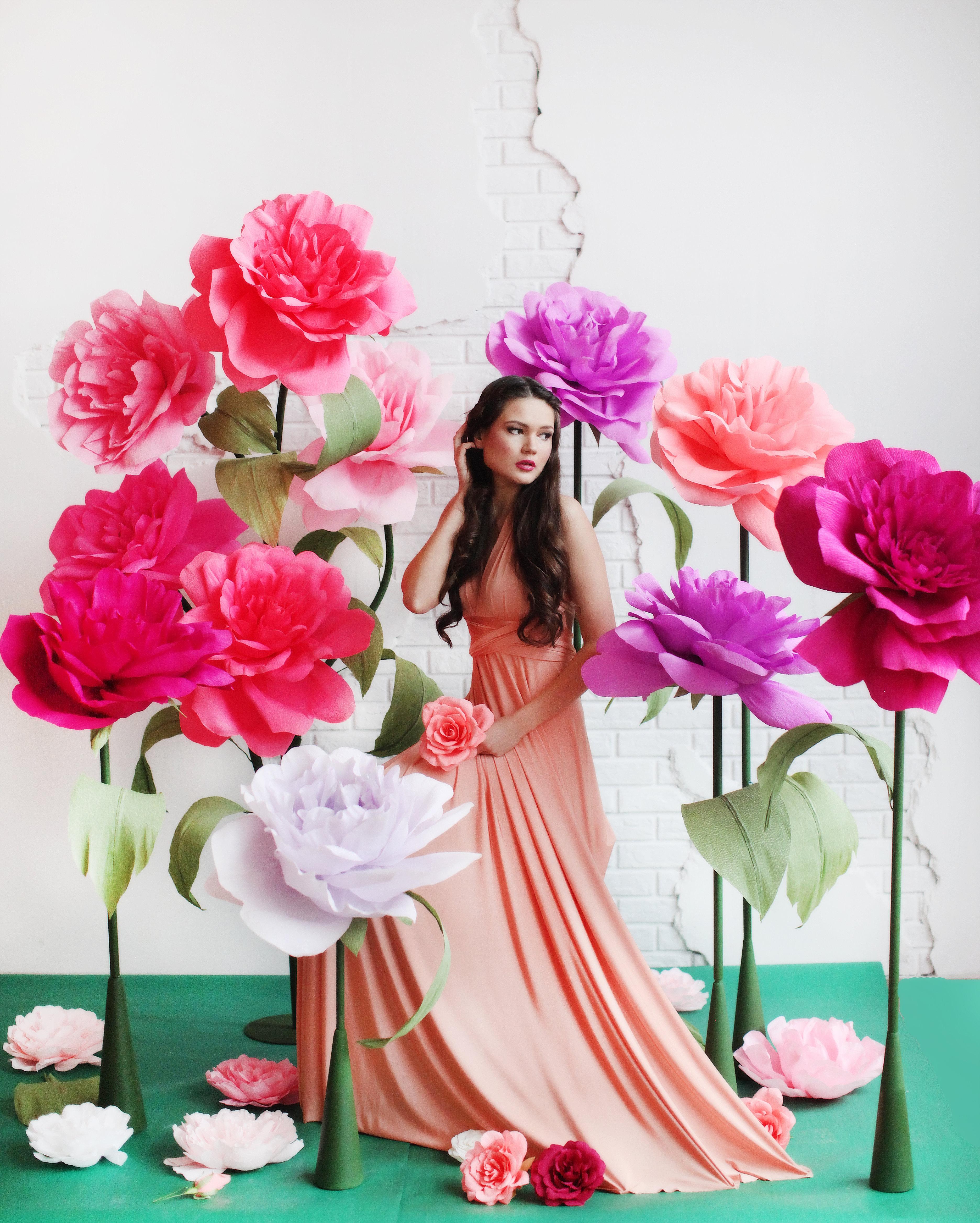 крупные фото розы