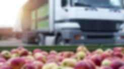 Transporte-de-alimentos-federecion-agrar