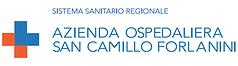 Logo San Camillo Forlanini.png