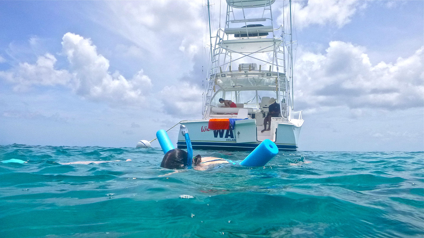 Speartime luxury charters barbados fishing snorkeling for Deep sea fishing st thomas