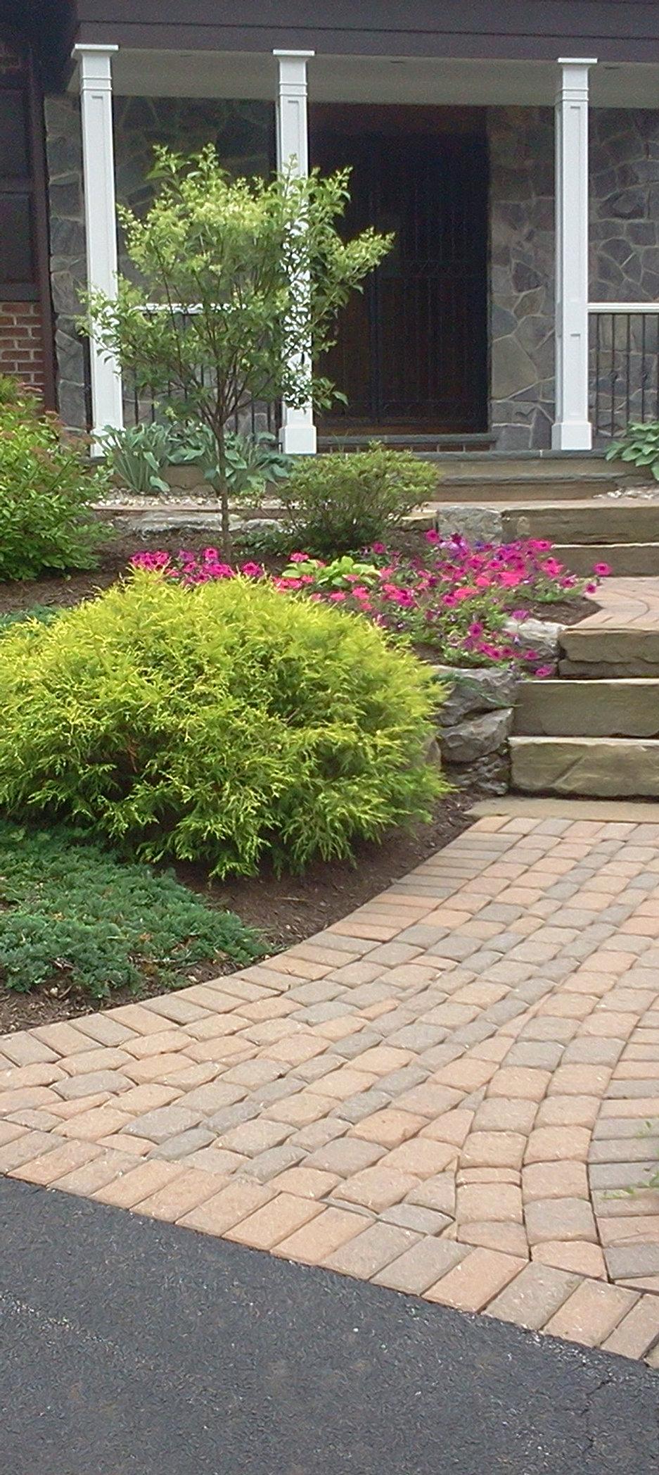 Annual and perennial garden design for Annual garden designs