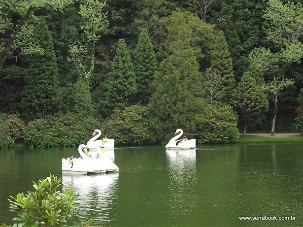 Beleza da vegetação no Lago Negro