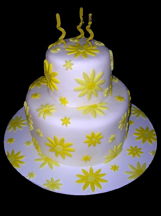 custom wedding birthday cakes hampton roads norfolk, virginia beach ...
