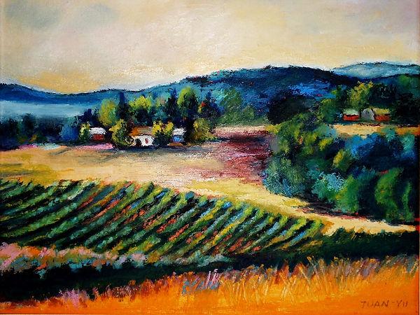 vineyardsummer.jpg