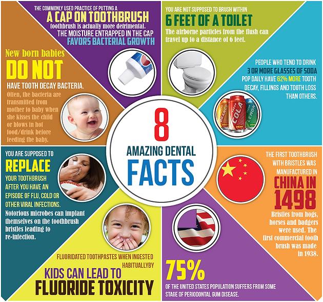 8 Amazing Dental Facts