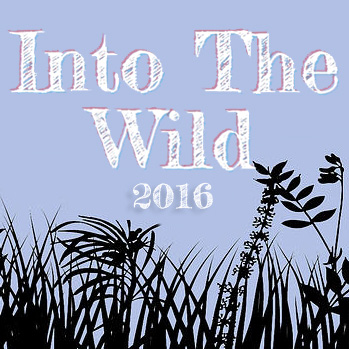 into the wild music Eddie vedder - into the wild [original soundtrack] songs download available in mp3 download 320kbps, youtube hd, songs lyrics, songs mp3 download, download zip and.