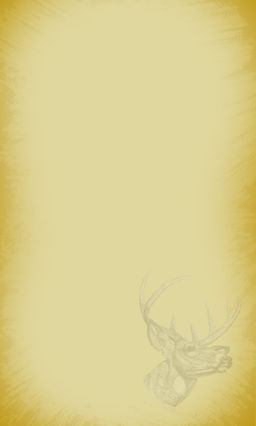 BIG-BUCK_CONTENT_BACKGROUND_2.jpg