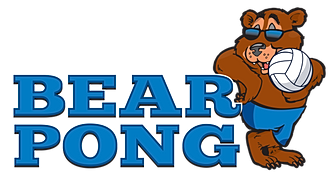 Image result for bear pong leftys