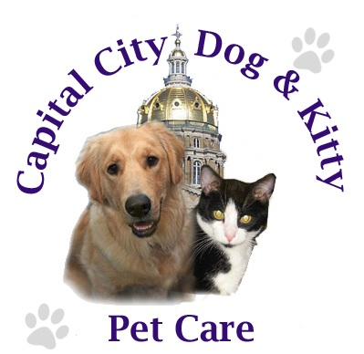capital city dog amp kitty pet care pet sitting dog walking des moines