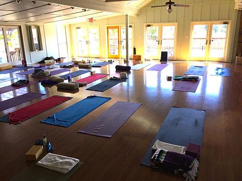 Yoga and Wellness Retreats
