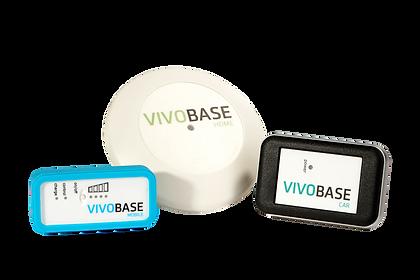 vivobase_gruppe2.png