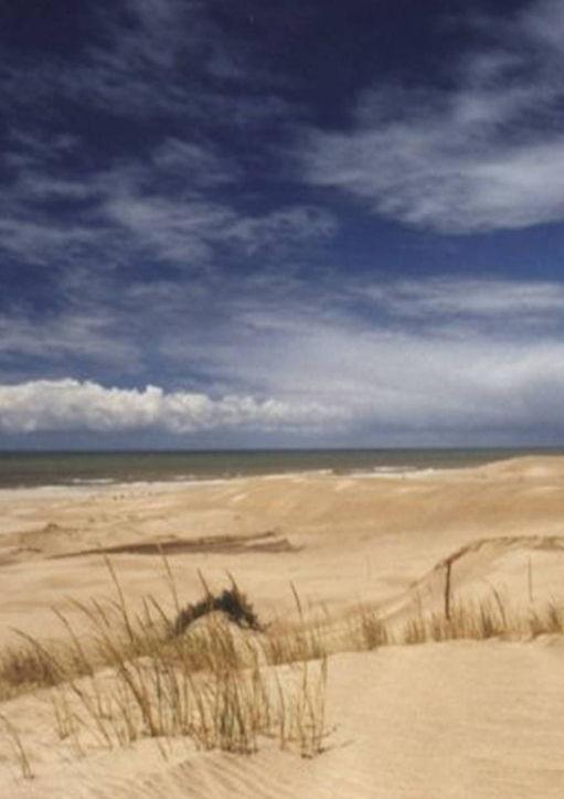 playa_gesell