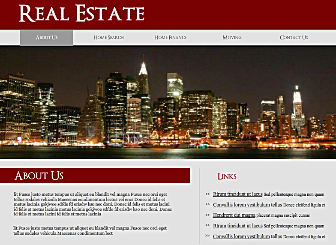 Real Estate Biz Template - This professional Flash template makes a strong and bold statement. With no downloads or programming, easy to customize section to share your services and information, this is a perfect way to present your business to the world.