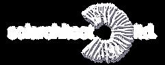 Solarchitect_Vector Logo.png