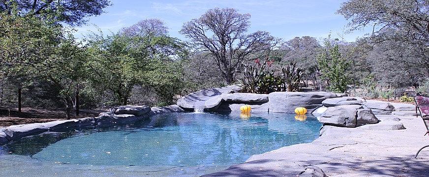 pool with slidejpg